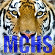Martin County Tigers